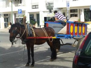 dette er IKKe Ludvigs hest!