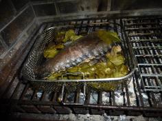 grillfisk